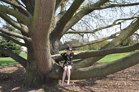 Climbing-tree